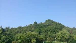 テニスボールと山のコラボレーション